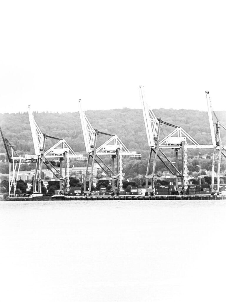 Harbor_18-08-2021