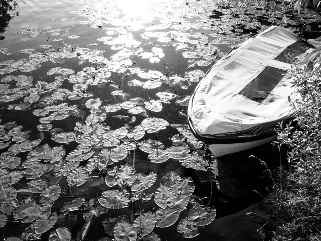 Still_Water_28-07-2021
